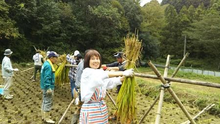 稲刈り1001.JPG